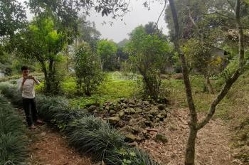 Bán lô đất 3500m2 có 800m2 đất ở tại Lương Sơn Hòa Bình