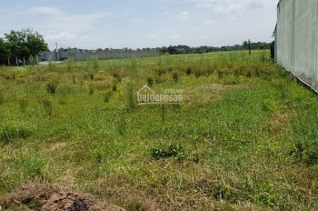 Bán lô đất huyện Đức Hòa, diện tích 15x20m, thổ cư 100% xã Hòa Khánh Nam