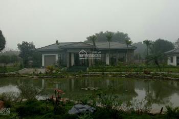 Bán khuôn viên hoàn thiện Lương Sơn, Hòa Bình, 5200m2 lô góc 2 mặt đường