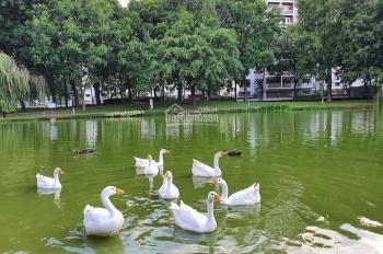 Cần bán căn hộ 2pn view hồ sinh thái giá tốt emerald celadon city