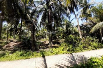 Đất Vườn Dừa, DT: 12.700m2 (71m x 178m), xã Định Trung, Bình Đại, Bến Tre, giá: 3 tỷ