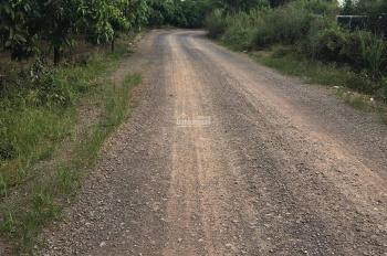 Bán 2300m2(40m x57m) đất trồng xoài trên đường 105 quốc lộ 20 xã phú ngọc đã có sổ riêng