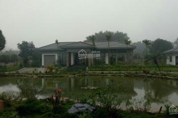 Cần bán khuôn viên biệt thự nhà vườn bậc nhất tại xã Cư Yên, Lương Sơn, HB