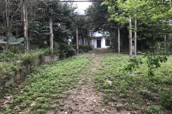 Bán gấp mảnh đất có sẵn khuôn viên nhà vườn 5000m giá chỉ 2.x tỷ ở Lương Sơn Hòa Bình.