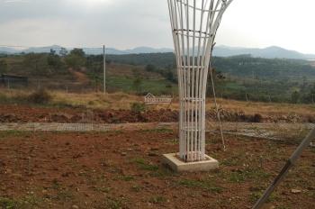 Cần bán đất gần Bảo Lộc có view đồi chè khí hậu mát mẻ sổ hồng trong tích tắc