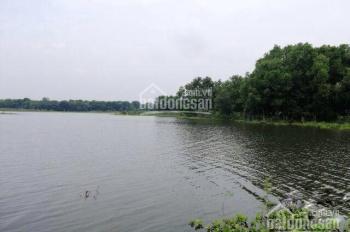 Thua độ cần bán gấp lô đất gần hồ Châu Pha,tx Phú Mỹ, BRVT, dt160m2, giá 800tr, SHR, LH 0898466306