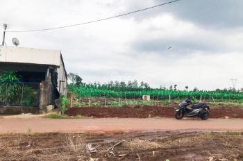 Bán đất Thanh Bình, Trảng Bom, gần ngã tư Tân Lập