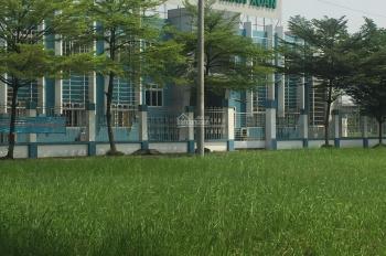Bán đất 10.000m2 Trần Đại Nghĩa, Lê Minh Xuân,Bình Chánh. Giá: 8tr/m2