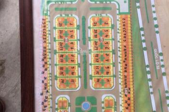 Bán nhanh đất DV Tân Việt. DT 98m2, MT 5m, hướng TB, giá 28tr/m2