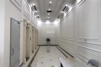 Cho thuê căn hộ 2 - 3 ngủ làm nhà ở, văn phòng tại Roman Plaza Tố Hữu, giá từ 8,5 tr/th