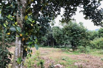 Bán 2600m2, giá 550 triệu tại Lương Sơn, Hòa Bình