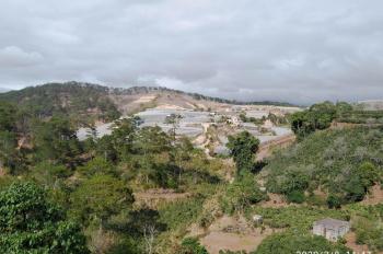 Bán đất ở đô thị tại Đà Lạt giá chỉ 13 triệu/m2