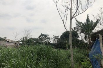 Bán 2 sào 720m2 đất nhà vườn tại xã Vân Hoà, Ba Vì, Hà Nội, giá 650 triệu