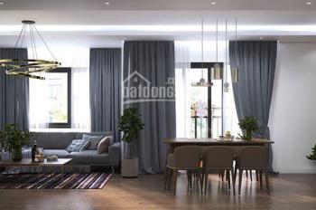 Chính chủ cho thuê 3 căn hộ 3 ngủ giá 16-30 tr/th, Vinhomes D'capitale miễn trung gian 0988607966