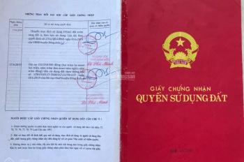 Bán đất chính chủ tại thôn Đình Trung, Xuân Nộn, Đông Anh, Hà Nội