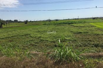 Bán 2 sào đất ruộng lên thổ cư được giá 3ty mặt tiền 40m