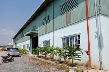 Cho thuê kho xưởng 11.000m2 mới xây dựng, trong khu công nghiệp Đức Hòa - Long An
