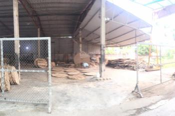 Bán nhanh 2 lô đất tại An Hưng, An Dương, Hải Phòng