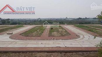 Cần bán đất dịch vụ Phụng Công - Văn Giang - Hưng Yên