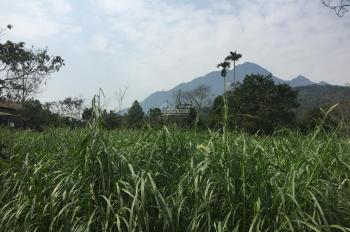 Cần bán lô đất 3950m2 đất làm biệt thự nhà vườn khu nghỉ dưỡng giá rẻ nhất tại Vân Hòa, Ba Vì, HN
