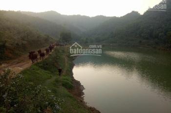 Chuyển nhượng 8 ha đất làm trang trại khu nghỉ dưỡng tại Lương Sơn tỉnh Hòa Bình