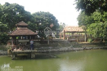 Cần sang nhượng khu sinh thái 7000m ở Lương Sơn giá chỉ 3.xx tỷ. LH 0917.366.060