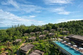 Cần bán gấp 16000m2 đất đồi ngay trung tâm Dương Đông, làm Resort view biển cực đẹp
