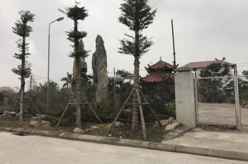 Tuyệt phẩm đầu tư đất biệt thự sinh thái Cẩm Đình, Hiệp Thuận, Phúc Thọ, LH gặp chủ 0912366433