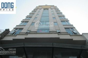 Cho thuê văn phòng đường Nguyễn Văn Giai quận 1 tòa nhà Hà Vinh Building DT 110m2 giá 40tr/tháng