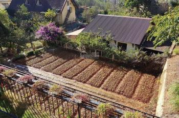 Nền biệt thự view đồi thành phố Bảo Lộc, cơ hội đầu tư sinh lời