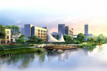 Bán nhà mặt tiền kinh doanh đường Nguyễn Thị Tú, 16x60m, giá 65 tỷ