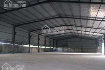 Cho thuê gấp nhà kho chứa hàng MT đường Tân Hòa Đông 2700m2, giá 210 triệu