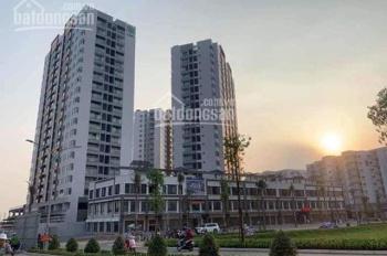 Chính chủ cho thuê căn hộ 75m2, 2 phòng ngủ, giá 8.9tr/tháng tại Mizuki Park, LH 0909660100