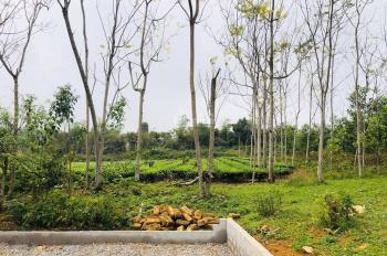 Chính chủ cần chuyển nhượng 3600m2 đất tại Yên Bài, Ba Vì, HN