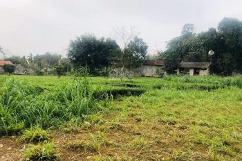 Cần chuyển nhượng lại lô đất trang trại nhà vườn diện tích 2000m2 nằm tại xã Vân Hòa, huyện Ba Vì,