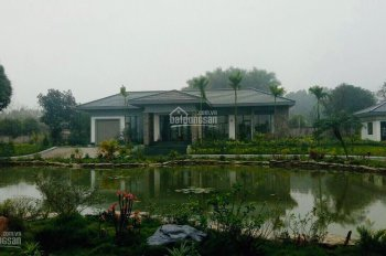 Chính chủ cần nhượng gấp khuôn viên biệt thự nhà vườn tại xã Cư Yên, huyện Lương Sơn, tỉnh Hòa Bình