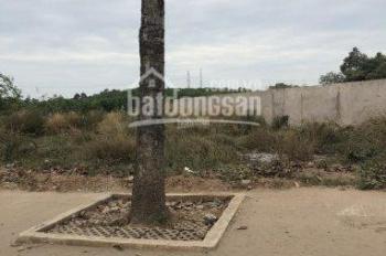 Tôi bán miếng đất mặt tiền ĐT 746, Đất Cuốc, Bắc Tân Uyên, DT 115m2, 590tr, sổ đỏ sang tên liền