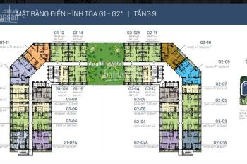 Chính chủ cần bán gấp căn hộ 1PN dự án Sunshine Garden, liên hệ: 0981359859