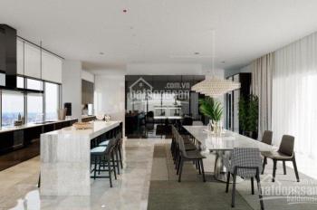 Bán penthouse tháp Hawaii, Bora, Bahamas, Maldives giá tốt, vui lòng gọi 0903.611.479