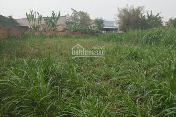 Bán đất cách đường TL8 100m Hòa Phú, Củ Chi