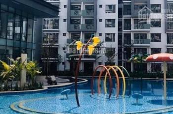 Cho thuê căn hộ Celadon City, P. Sơn Kỳ, Q. Tân Phú, ngay Aeon Mall, 53m2, 10tr/tháng, có hồ bơi