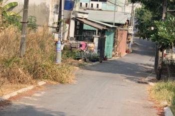 Đất Chánh Nghĩa đường nhựa 5m, thông từ Bùi Quốc Khánh sang Lào Cai