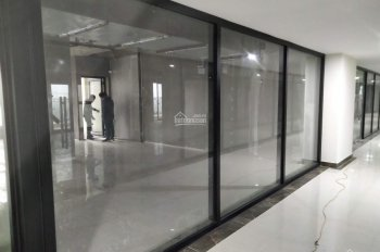 Cho thuê sàn thương mại làm văn phòng tại dự án Roman Plaza Tố Hữu