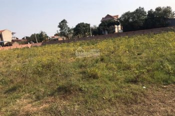 Cần bán ô đất gần 4000m2, đã xây bao loan, 3 mặt tiền giá hấp dẫn