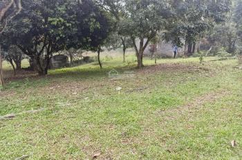 11000m2 đất đã có 2 ao rộng khuôn viên nhà vườn chưa hoàn thiện tại Cư Yên, Lương Sơn, Hòa Bình