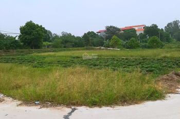 Gia đình tôi cần bán 100m2 đất đấu giá Đại Tài Nghĩa Trụ giáp dự án Đại An, giá đầu tư 0986774358