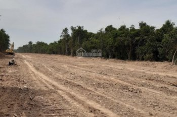 Cho thuê lâu dài 1000ha đất bằng phẳng