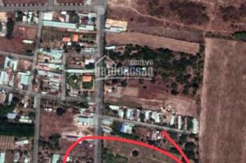 Tôi có lô đất 556m2 cách chợ Hắc Dịch Tóc Tiên 200m, thích hợp xây biệt thự hay phòng trọ cho thuê