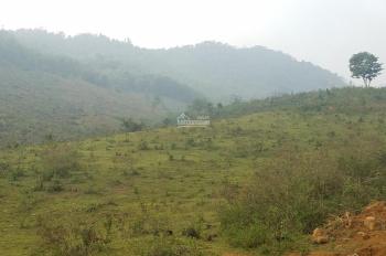 Bán 200ha tại Đà Bắc, Hòa Bình, phù hợp trồng cây, làm trang trại giá 180tr/ha. LH: 0987537087
