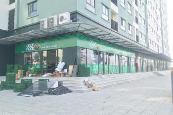 Cần bán lại lô shophouse khối đế chung cư kinh doanh tốt tại Kiến Hưng